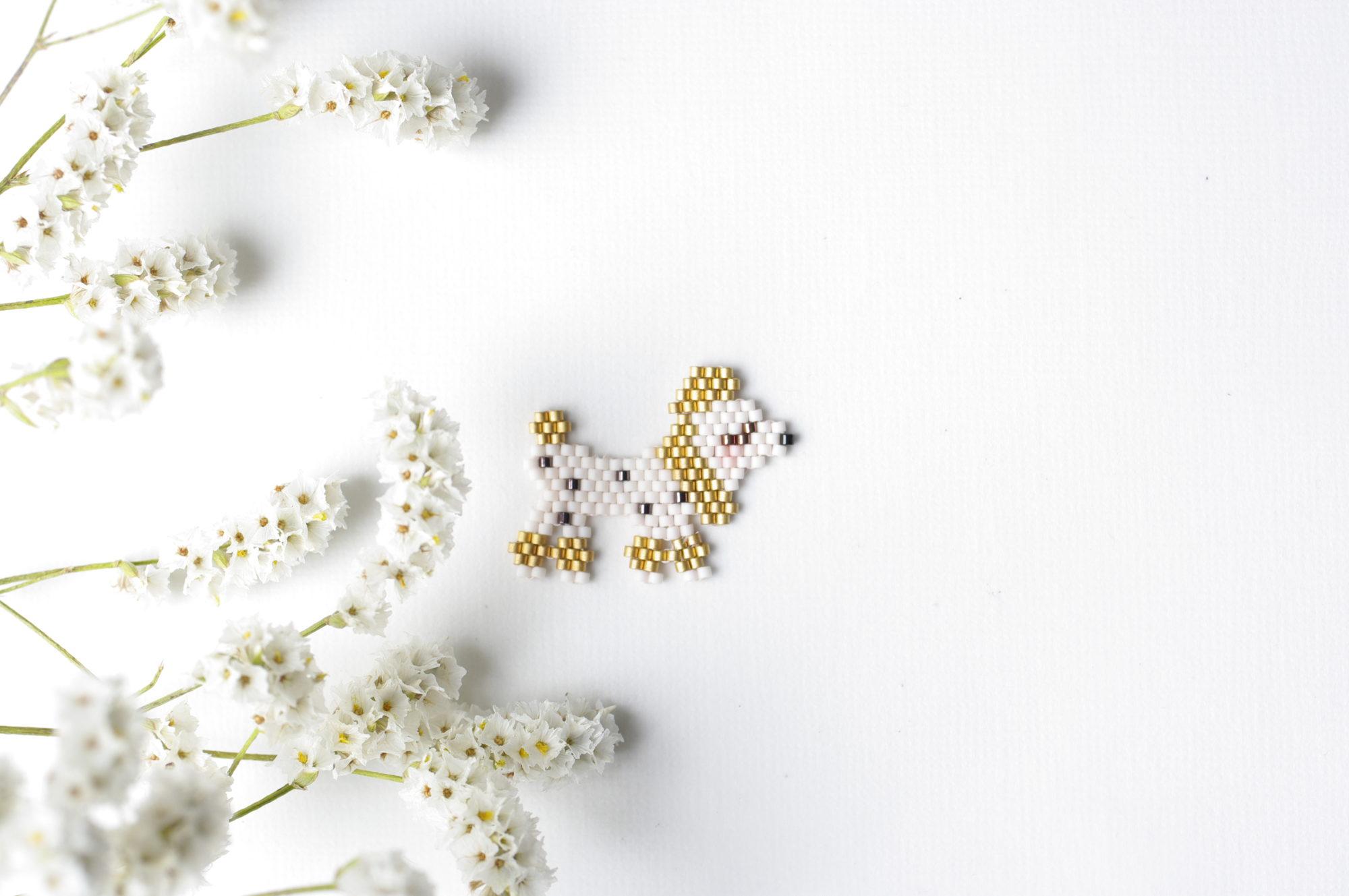 Chien – Le caniche June